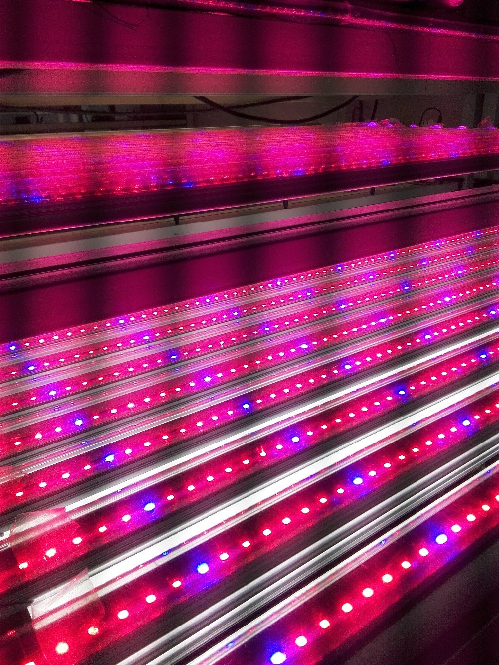 Last red hydroponics 630nm 5