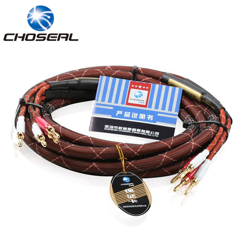 Choseal LB5110 Top Level Speaker Cable Professional Hi-Fi Power Amplifier Cable Gold-Plated Banana Plug (2 Pair) 2.5M цена
