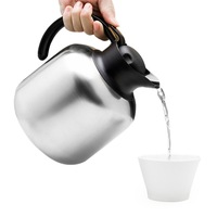 Double Layer Heat Preservation Coffee Pot High Quality Materials Home Portable Hot Kettle