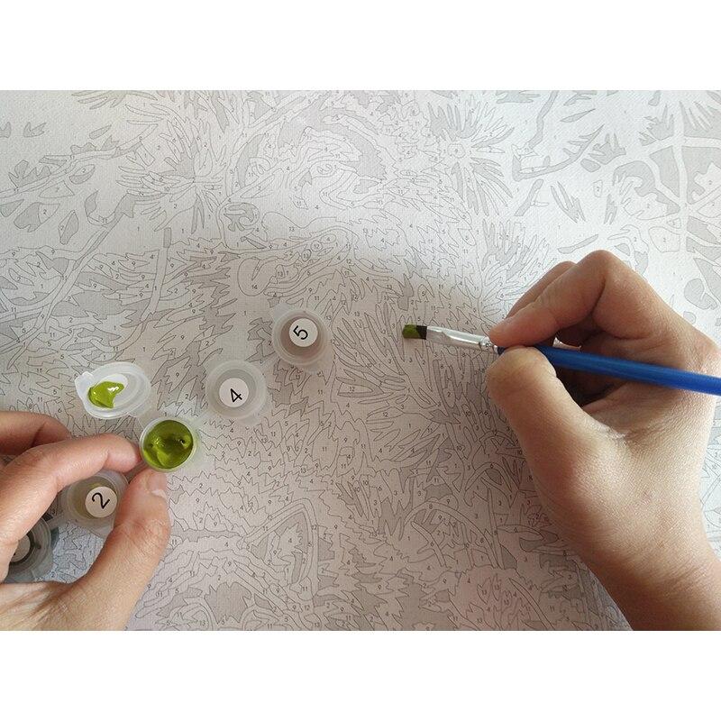 Çağırılmamış cizgi filmi akril şəkil DIY Rəsm Nömrələrə - Ev dekoru - Fotoqrafiya 6