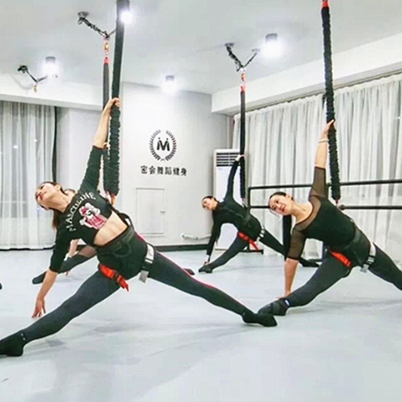 36KG - 91KG S/M/L Gravity Yoga Bungee Dance Workout Trainer Gym Fitness Equipment Resistance Band Training By DHL Free Shipping african elephant