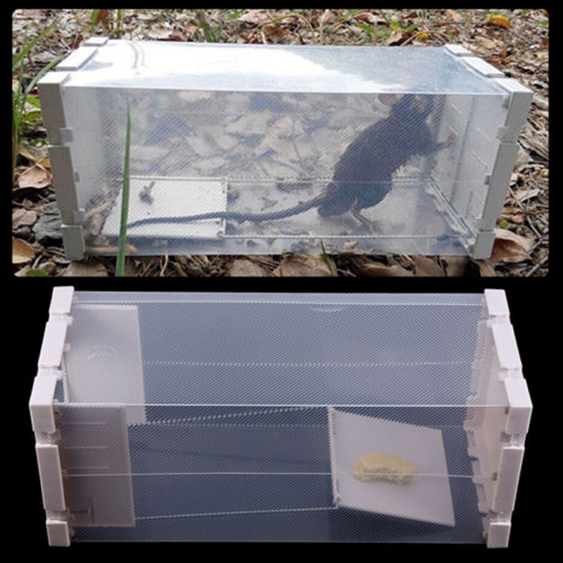 Catching Mice Cage Rat traps Mice Rodent Animal Control Catch Bait Rodent Animal Catcher Cage garden tools