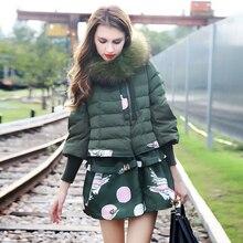 Корейский зимней одежды женщин средней длины толстый теплый печати пуховик большой енота меховым воротником зимняя куртка женщин 2016