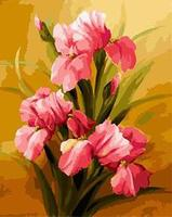 MaHuaf X1634 Pink Irises Framed Acrylic Painting By Number Kit Digital Canvas Paintings For Living Room