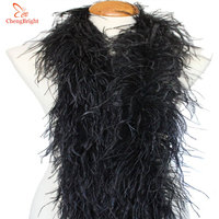 ChengBright 2 Yards/Lot 6 Layer Natural Fluffy Ostrich Feather Boa Costumes/Trim For Party/Costume/Shawl/Craft Ostrich Feather