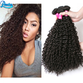 Malaysian Kinky Curly Hair 4 Bundles Kinky Curly Virgin Hair Remy Malaysian Hair Weave Websites Kinky Curly Human Hair Bundles