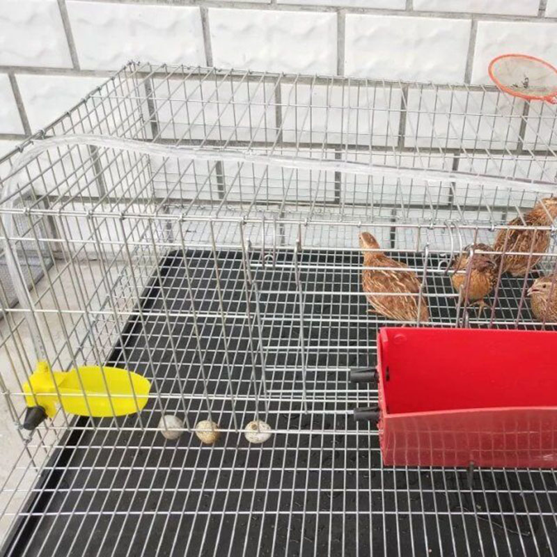 Pets Rabbit Cage Large Quail Chicken Coop 70cm Length With Roof That Opens Suitable For Up To 25 Quail