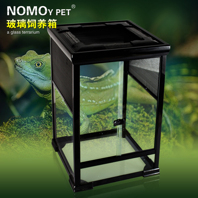 Reptile Veiled Chameleon High Box Mane Lion Ig Ball Python Snake