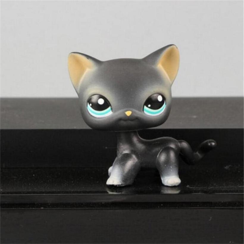 4-6cm pet shop kawaii pvc gray blue eyes black yellow tiger short hair kitty anime pet action figure juguetes kids toys gifts