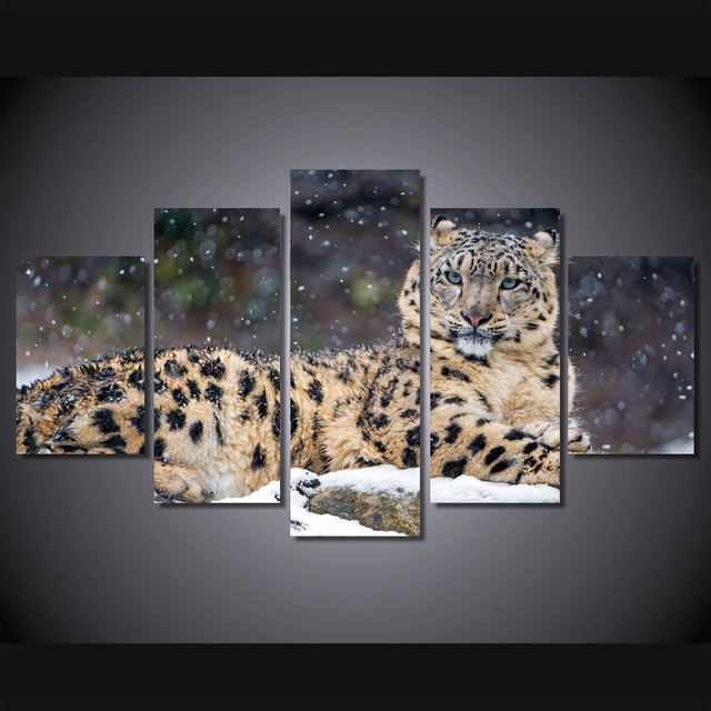 Snow Leopard 4k Spray Painting Set Of 5 For Office Room Decor Wall