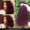 Brazilian Kinky Curly Hair Red 99J Burgundy Wet And Wavy Human Hair Extension Cheap Brazilian Curly Virgin Hair 4 Bundles