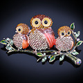 FARLENA Jewelry luxury full rhinestones painted owl brooch fashion large brooches for women dress accessory
