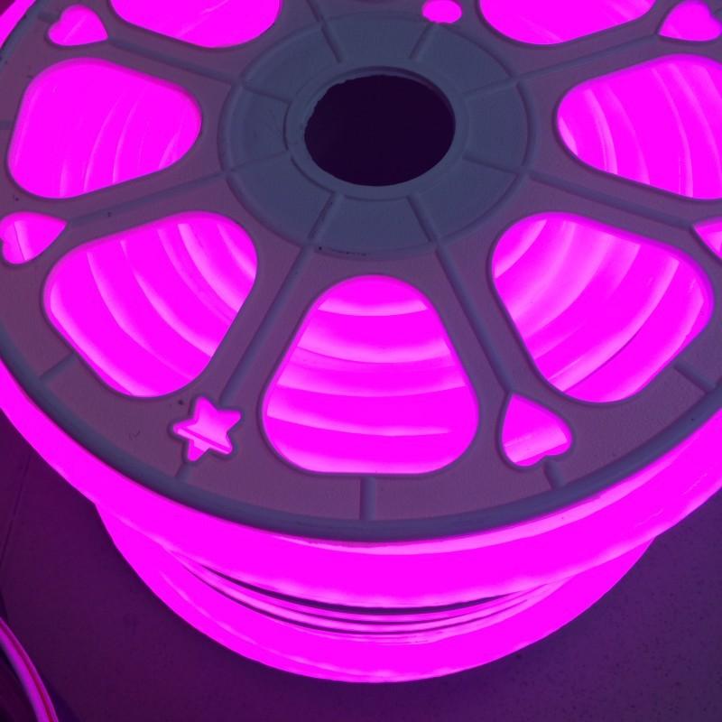 Dc 12v 24v Waterproof Flexible Led Neon Rope Light 2835