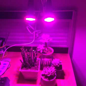 Dual Head 72 LED Plant flower Grow Light Lamp growth E27 Desk Clip Holder For vegetable indoor greenhouse Hydro Veg seeding
