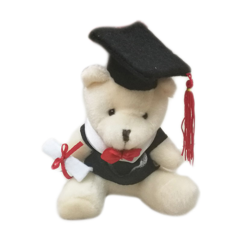12cm x20pcs Stuffed Animals Sitting Graduation Bear Plush Toy With Hat and Book Formatura Doctor Panda Soft Dolls