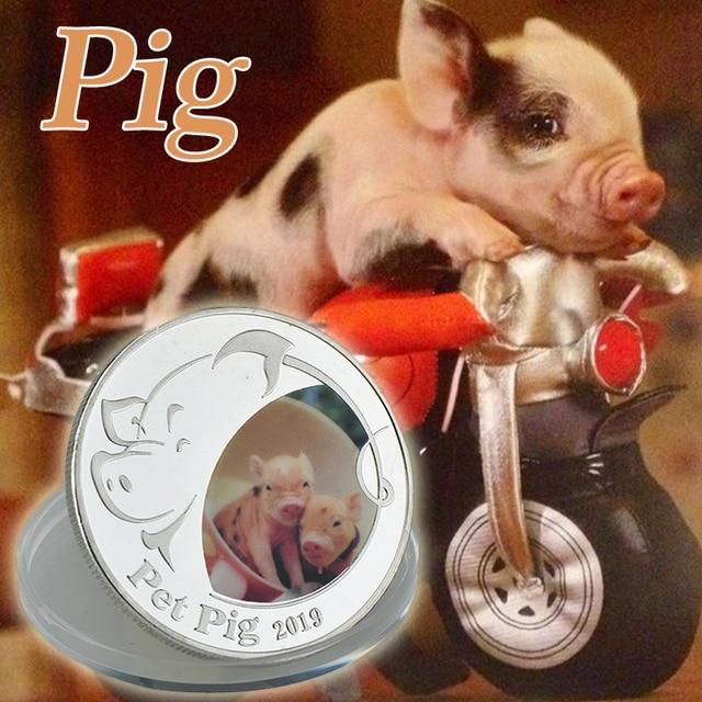 Moneda chapada en plata WR Linda Animal mascota cerdo moneda conmemorativa para la colección regalo de negocios para la decoración del hogar de Año Nuevo