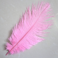 10 PCS beautiful 20-25 cm / 8 - 10 inches of pink wedding feather ostrich feathers