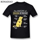 Anatomy Of A Golden ...