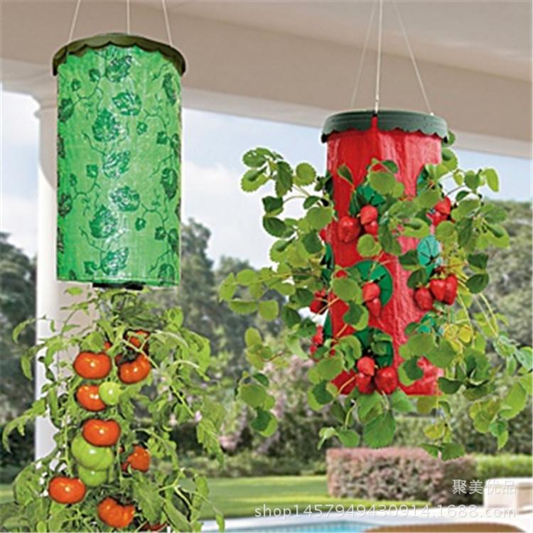 Tomatoes Upside Down Vertical Wall Hanging Planter Bag Plant Strawberry  Growing Bags Seeds Planting Garden Pots - Popular Strawberry Planters Plastic-Buy Cheap Strawberry Planters