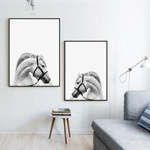Черно белые настенные картины с изображением головы лошади для