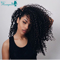 7a Brazilian Kinky Curly Full Lace Human Hair Wigs For Black Women 130% Density Afro Kinky Curly Lace Front Human Hair Wigs