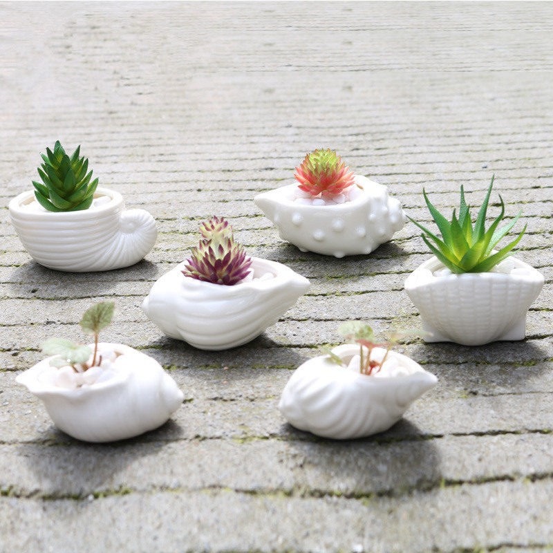 6pcs set white mini ceramic flower pots zakka shell. Black Bedroom Furniture Sets. Home Design Ideas