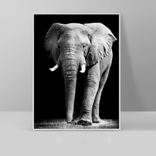 Black and White Elephant Animal Painting Posters And Prints For Living Room Modern Home Decorative Picture Canvas Printing