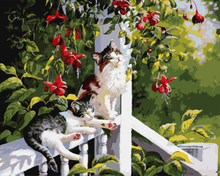 """DIY Painting By Number – Cats (16""""x20"""" / 40x50cm)"""