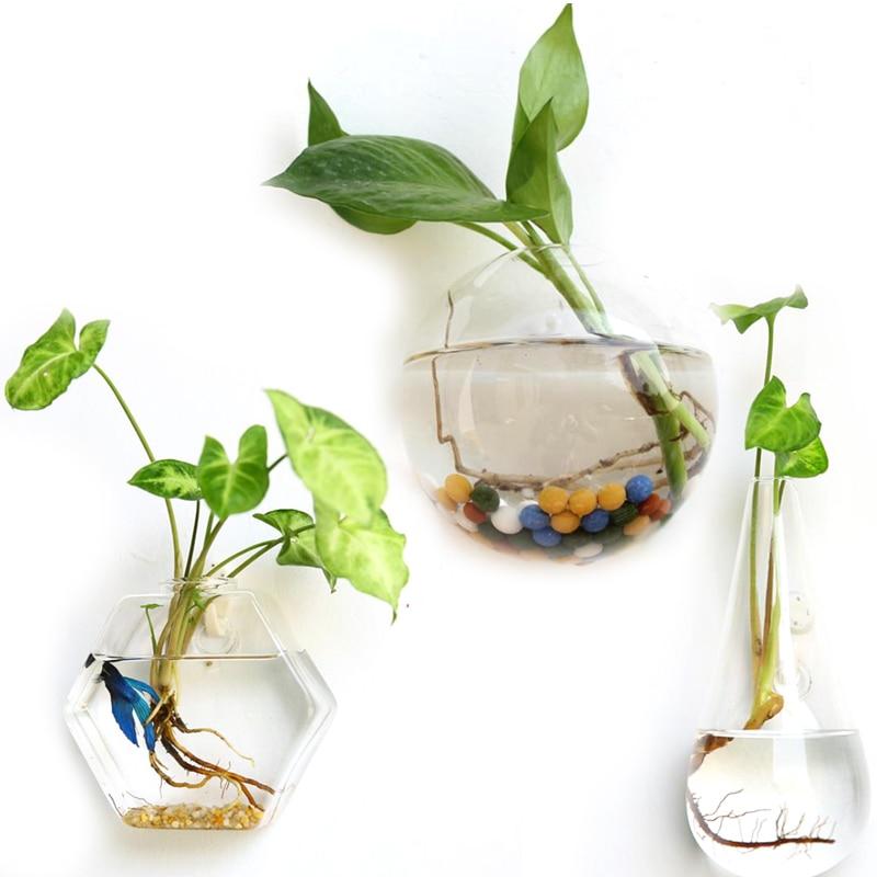Creative Glass Flower Planter Vase Terrarium Container Garden Wall  Decor(China) - Online Get Cheap Terrarium Containers -Aliexpress.com Alibaba Group