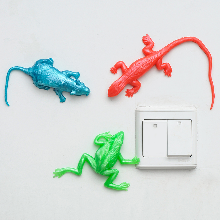 Sticky Amp Stretchy Toys : Large assorted lizard mouse frog warthworm stretchy sticky