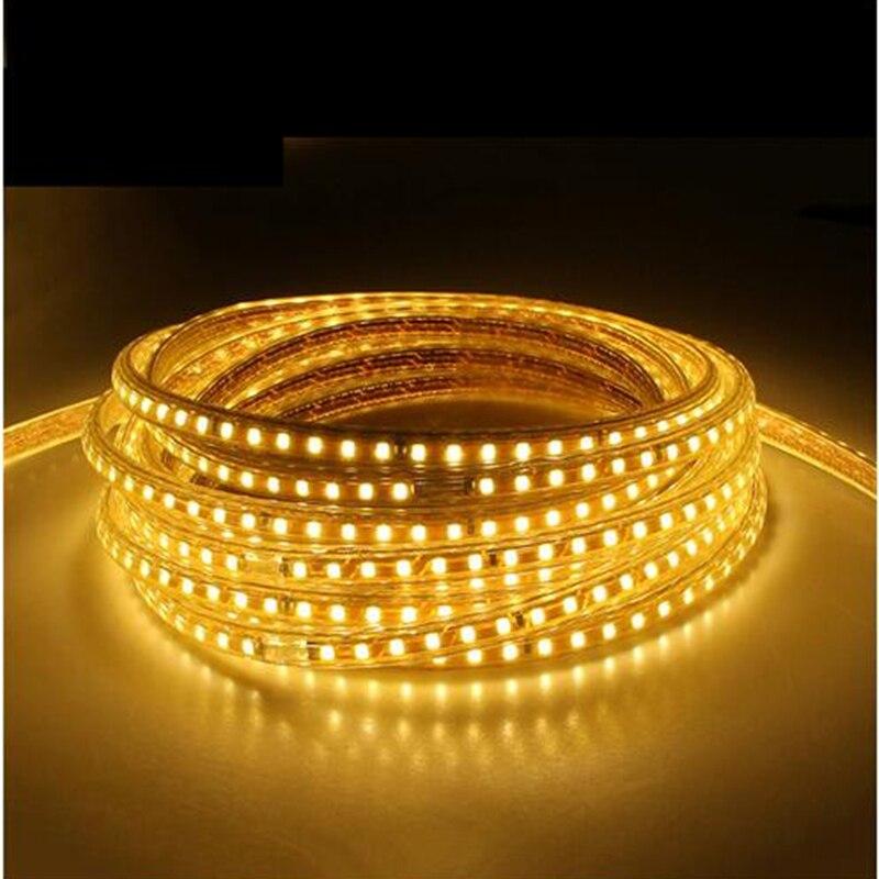 SMD 5050 AC220V LED Strip Flexible Light 60leds 1M Waterproof Led Tape LED Light With Power Plug Christmas light for holiday