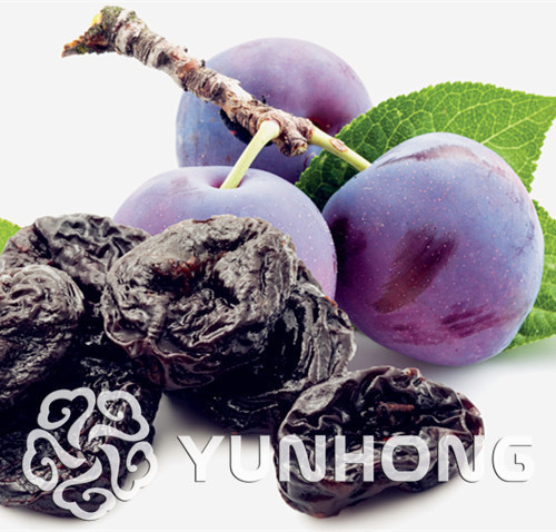 10 cái Giống Của Trong Chậu Đỏ Prune Bán Buôn Hoa Quả Prune Trái Cây Delicilous Rất Easy Grow Rose Quà Vận Chuyển Miễn Phí
