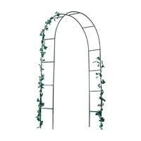 Simple Clematis Vine Grape Arch Climbing Vine Rack Rose Garden Horticultural Climbing Flower Rack
