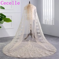 2018 New Real Champagne Long Cathedral Bridal Veil 1 Single Layer Sequins Lace Trim Cathedral Wedding Veil With Comb HL59