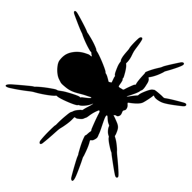 14.2*13.3CM Simple Spider Tarantula Pattern Car Styling Decals Vivid Vinyl Reflective Car Decal Black/Silver C9-2144