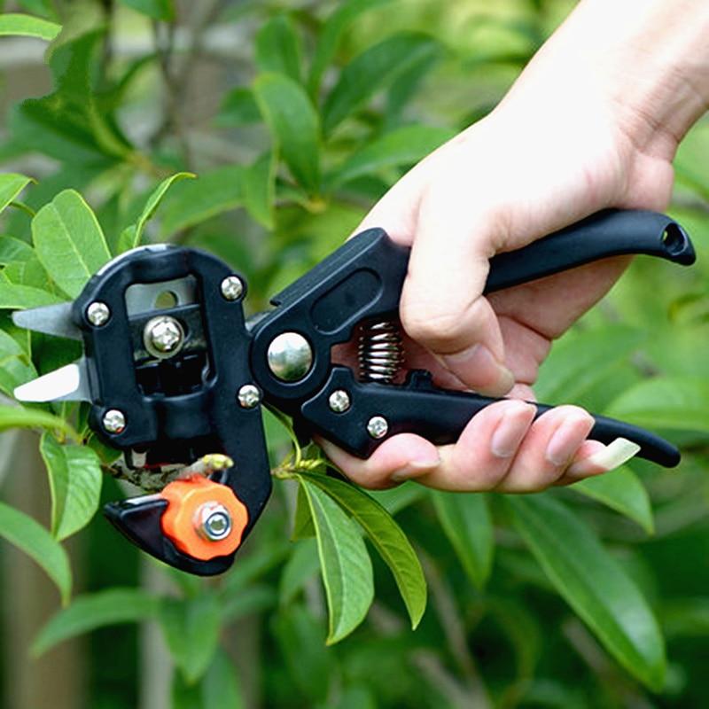 darmowa wysyłka drzewo owocowe nożyce do szczepienia ogród - Narzędzia ogrodnicze - Zdjęcie 2
