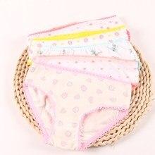 Girls Briefs Underwear Short Panties Cotton Children 5pcs/Lot Suit Colorful 2-12-Years