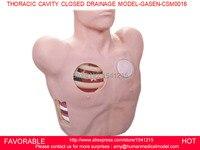 의료 교육 manikins training simulators 의료 교육 시뮬레이터 흉부 공동 폐쇄 배수 MODEL-GASEN-CSM0016