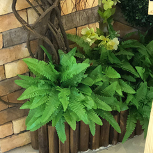 garden fake adornment grass green plant pot hanging row fern leaf persian leaves wall planted decor Arranging Leaves