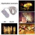 Fio de Prata de alta Qualidade 3 m Waterproof 30 Led Luz Cordas Natal Festa de Casamento Decoração Da Lâmpada IP66 Com Bateria Botão hot