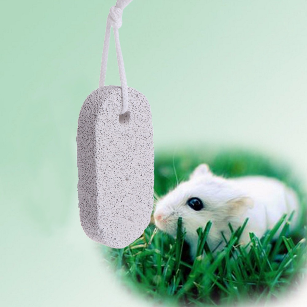 font b Pet b font Hamster Teeth Grinding Stone Minerals Rabbit Rat Chinchilla Squirrel Squirrel