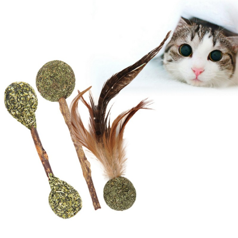Catnip Lollipops Actinidia Polygonum Stick Pussy Cat Teeth Molars Clean Tone Fresh Hair Removal Ball Pet Cat Toy