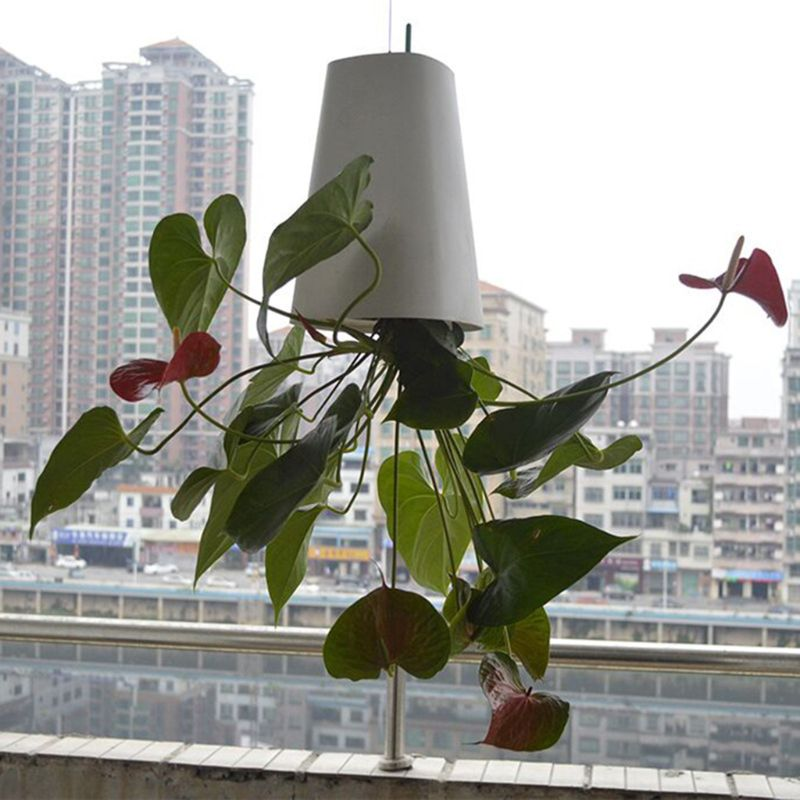 2019 New Sky Garden Creative Aerial Flower Pot Plastic Hanging Pot Orchid Pot Upside Down Small Flower Pot Inverted Planter