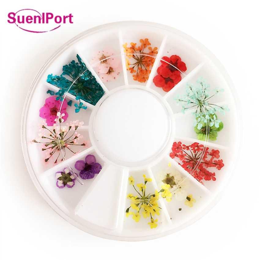 Sune L พอร์ตเล็บอุปกรณ์เสริมเล็บธรรมชาติแห้งดอกไม้ตกแต่งเล็บ DIY เล็บสติกเกอร์ดอกไม้ที่เก็บรักษาไว้เคล็ดลับเล็บ