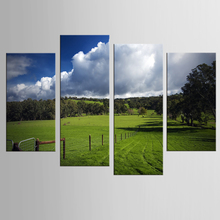 Canvas painting 4 pieces of vast grass wall painting art canvas picture for living room decoration painting print poster