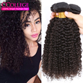 Malaysian Kinky Curly Weave Human Hair Malaysian Kinky Curly Virgin Hair Virgin Cheap Maylasian Curly Hair 4 Bundles 30 Inches
