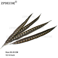 30 35 cm 12 14 Inch Lady Amherst Tail pheasant Feathers Use Arts and Crafts