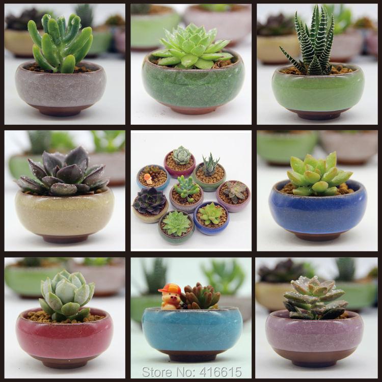8Pcs/Lot Microlandschaft Mini Succulent Plants Flowers Vase Flowerpot Terrarium Container Mini Bonsai Pots Ceramic Accessories
