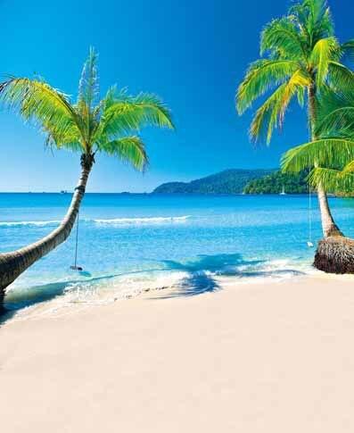 10x10ft Palm Trees Blue Sea Beach Islands Summer Wedding