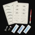 Eyebrow Microblading Makeup Set Manual Tattoo Pen + Eyebrow Pigment Black + Practice Skin + 12 14 18 Needles Kits For 3D Tebori